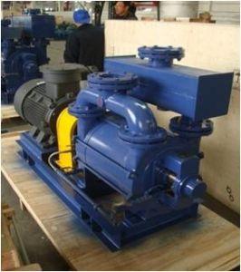Slv Series Bomba de vácuo de anel líquido e o compressor