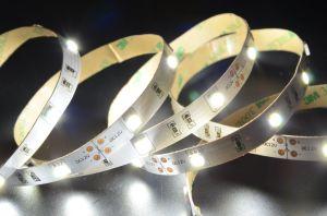 5050 illuminazione di striscia calda di bianco LED con CE/RoHS/FCC/UL