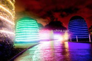 Luz real da árvore do diodo emissor de luz do projeto Ws2811 5050SMD 30LEDs Digitas RGB