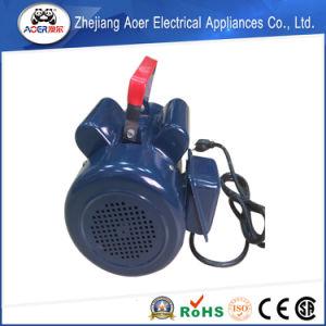 AC企業のコンデンサーの開始AC誘導電動機110V