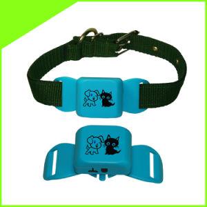 Mini GPS Tracker Cctr-623 para perro Gatos Mascotas pueden insertar Collar GPS Gratis Web y Android Ios APP Tracking