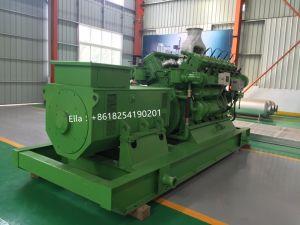 베스트셀러 1000kw 디젤 엔진 발전기 세트 (LHDG1000)