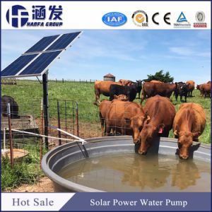 5 CV bomba sumergible solar con el precio para la agricultura de riego agrícola
