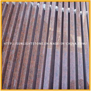 Le polissage Tianshan Dalles de granit rouge pour les dalles de sol ou de plans de travail