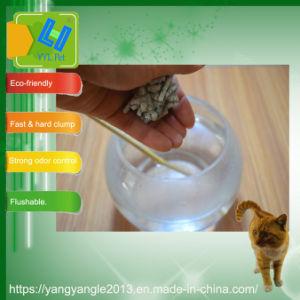 性質の豆腐のキャットリターの追加された実行中カーボン
