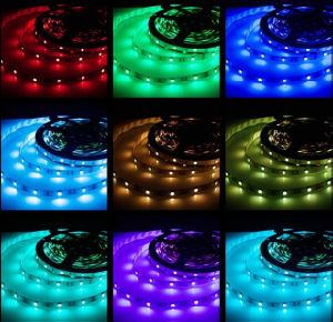 Striscia flessibile Colourful 30LEDs/M con Ce, RoHS di alta qualità SMD5050 RGB LED