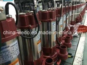 SPA6-28/2-1.1A versenkbare Wasser-Pumpe mit Niveauschalter