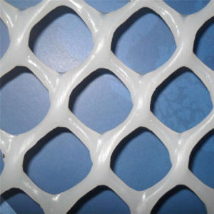 家禽のためのプラスチック平らな金網かプラスチック明白な網