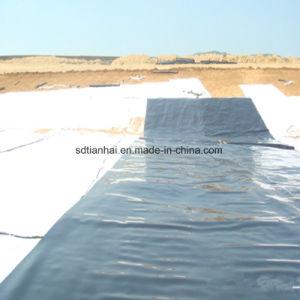 山東TianhaiのHDPEのGeomembraneのインストール