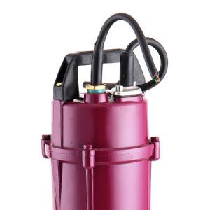 Qdx Series 0.5 HP de alta calidad de agua sumergible bomba para agua potable