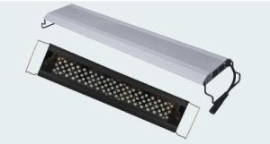 수족관 어항에 LED 수족관 전등 설비