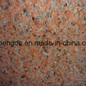 Красочные каменными/природного гранита каменными/красный/черный/серый гранит для использования