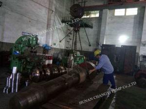 Motor eléctrico de Etapa Única Bomba de desidratação de água centrífuga