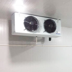 Dispositivo di raffreddamento di aria della cella frigorifera, dispositivo di raffreddamento di aria di bassa tensione