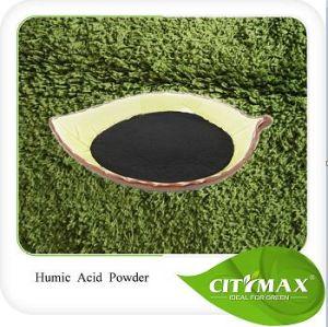 Bron van uitstekende kwaliteit 100% van Humate Leonardite van het Kalium In water oplosbare Organische Meststof