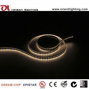 Indicatore luminoso di striscia flessibile registrabile di temperatura di colore del Ce SMD 1210 120LEDs/M dell'UL LED