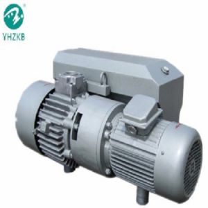 Xd-250 광고 장의 머물기를 위한 회전하는 바람개비 진공 펌프