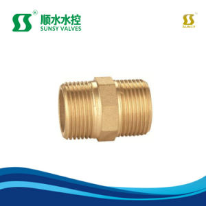 Ss20220 La compression de base en laiton Raccords de flexible du raccord de tuyauterie à enfoncer le raccord du tuyau de raccord en T