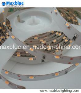 Indicatore luminoso di nastro flessibile di DC12V 3014 Sideview LED