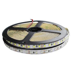 2835 12V Luz Flexível 120LED/M, 5m/lote, Branco e Branco Quente, Azul, Verde, Vermelho, Amarelo, Fita LED Fita Flexível
