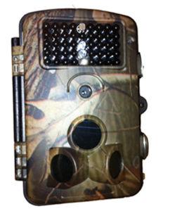 La caza de fauna silvestre DVR de infrarrojos Trail cámaras con protegido con contraseña