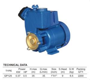 セリウムの公認の鋳鉄の水ポンプ(GP125)