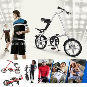 남자를 위한 항공기 알루미늄 합금을%s 가진 싼 접히는 도시 자전거