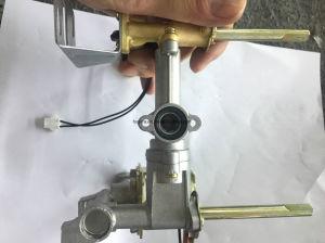 Panel de acero inoxidable calentador de agua de gas con piezas de repuesto (JZE-189)