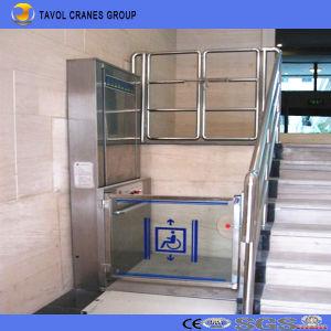 ホームのための安いホームエレベーターの上昇のガラス小さいエレベーター
