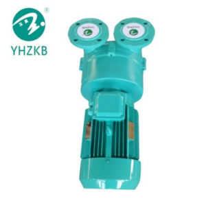 Sk-4.5D de Vacuümpomp van de Ring van de vloeistof/van het Water voor EPS de Machine van het Schuim