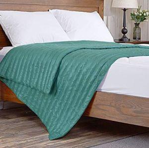 녹색 쉬운 실내와 옥외 던짐 담요를 내린다