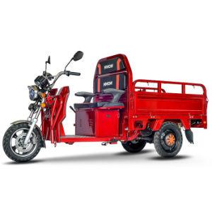 Nwow-Warrior2 Three-Wheel entrega y la carga triciclo eléctrico