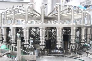 Automatische het Afdekken van het Flessenvullen van het Glas van het Sap Machine voor Verse Fabriek Fruitmachine