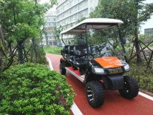 Os preços do Veículo Eléctrico de um carro eléctrico Electric Golf aluguer de veículos eléctricos carro