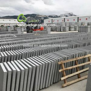 De goedkoopste Opgepoetste G603 Lichtgrijze Tegel van het Graniet