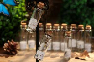 Augurando a bottiglia il mini presente di compleanno della bottiglia di vetro