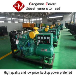 Gruppo elettrogeno diesel della Cina Weifang 50kw/62.5kVA per l'allevamento