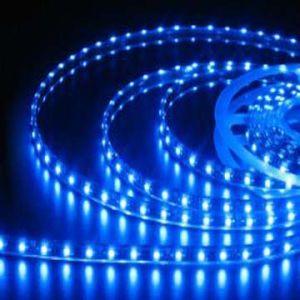 適用範囲が広いLEDの滑走路端燈、屋外の装飾LEDのストリップ(BST-3528B60D-8MM-12V)