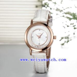 Progettare la signora per il cliente Fashion Woman Watch (WY-036E) di affari