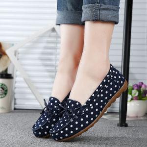 Estilo clásico sueco mujer Zapatos de baile Zapatos de Vestir (FTS1019-23)