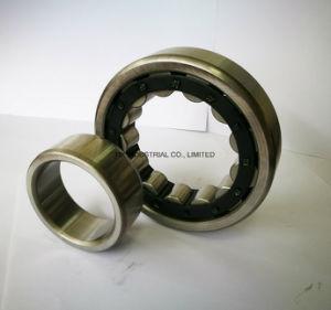 Zylinderförmige Rollenlager NF2203em, NF2204em, NF2205em, NF2206em, NF2207em, NF2208em, NF2209em, NF2210em