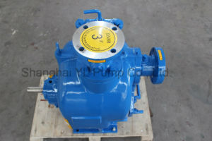 Pompe haute pression/eaux usées/Diesel de la pompe de la pompe à eau