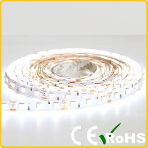 Il CE RoHS ha certificato la striscia flessibile di 5050 LED per Lighitng domestico