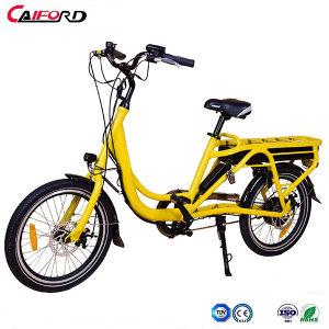 Nouveau produit vélo électrique Heavy Duty de bicyclettes en aluminium Ebike