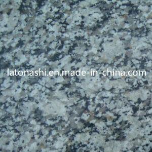 Flooring、Wall、Pavingのための割引White Tiger Skin Granite Tile