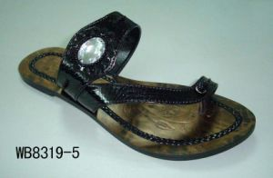 Lady Shoes (WB8319-5)