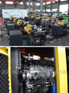 Хорошее качество звуконепроницаемых типа 200квт 250 ква Рикардо дизельного генератора