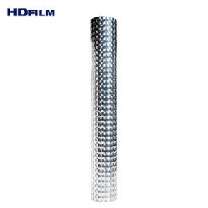 Mikro-Lentikulares des Objektiv-3D niedriges transparentes Bildschirmanzeige-Film Multi-Objektiv des Film-CPP BOPP und metallisiert