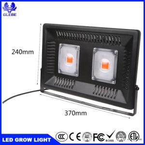 IP67 100W LED SABUGO crescer a luz para as emissões