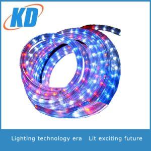 Sala de suave luz de LED LED Iluminación decorativa con tira de fabricante